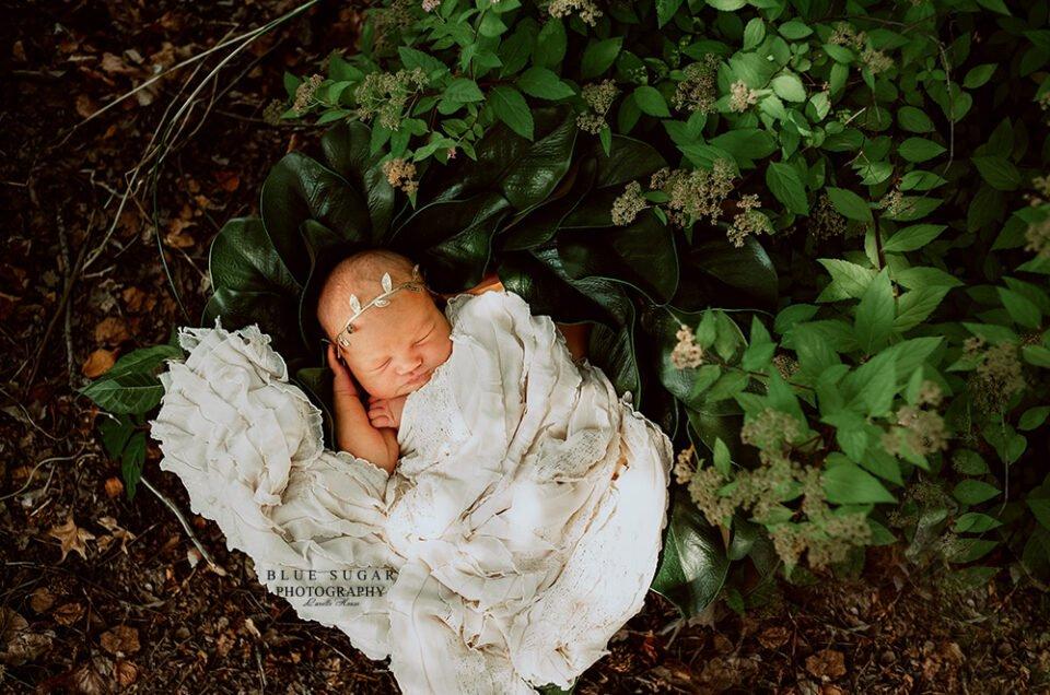 Baby Haylie   Newborn   Lovettsville, VA Newborn Photographer   Purcellville, VA Newborn Photographer   Leesburg, VA Newborn Photographer   Ashburn, VA Newborn Photographer   Round Hill, VA Photographer