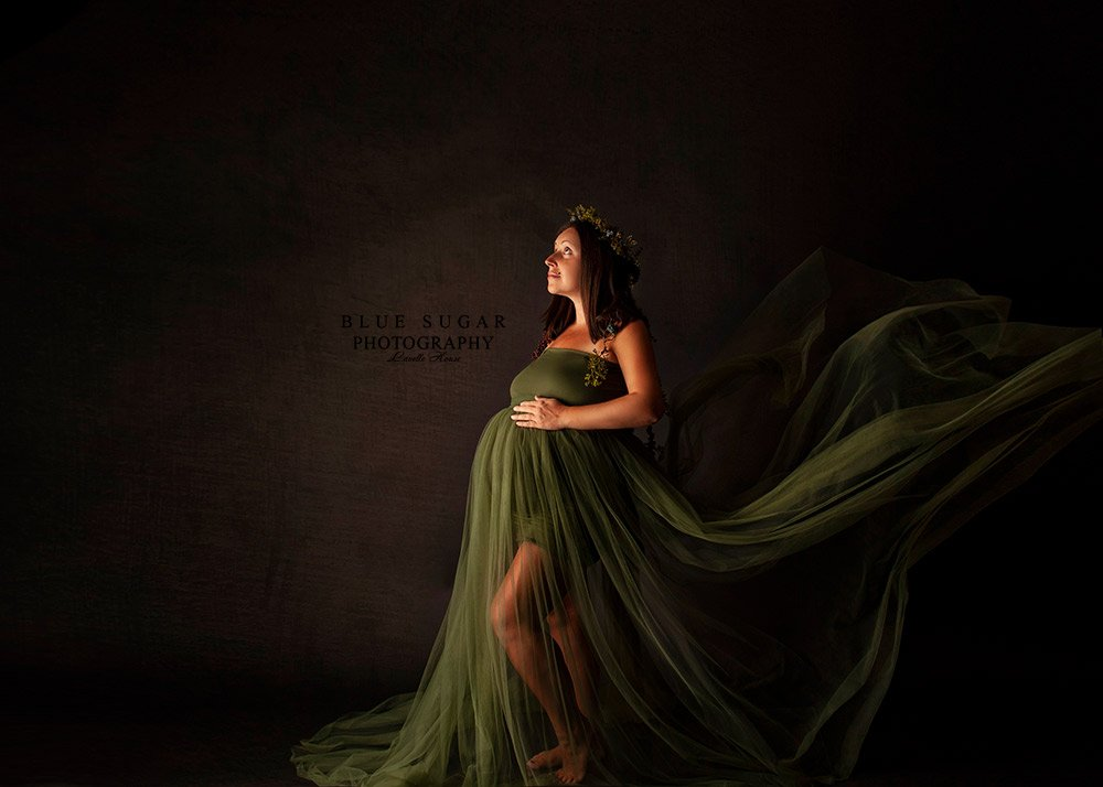 Loudoun County Maternity Photographer