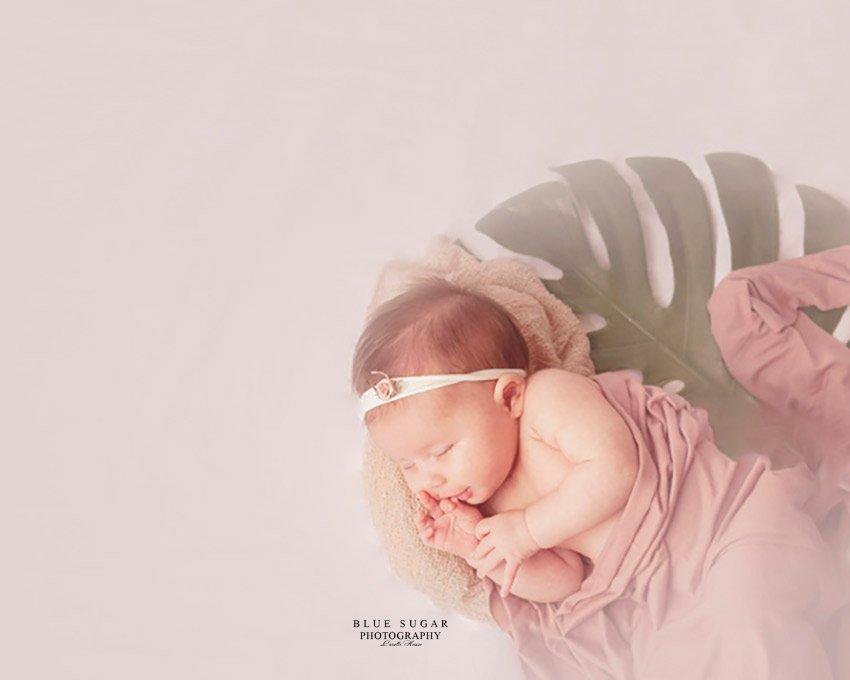 best studio newborn photographers