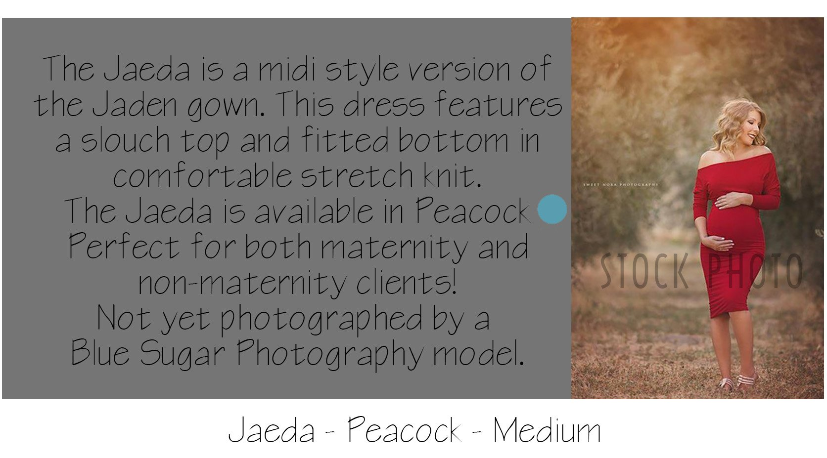 Maternity Photo Session: Jaeda Maternity Gown