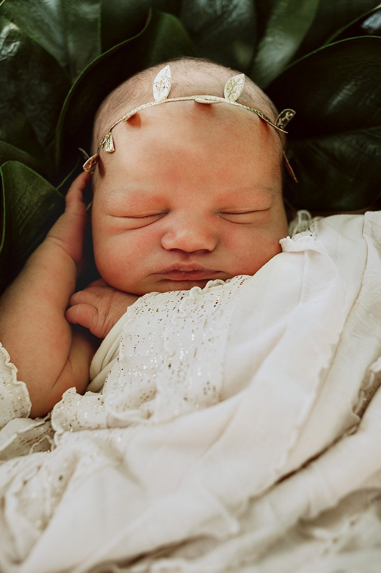 newborn photography in loudoun county